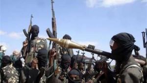 نيجيريا:مقتل 96 شخصا باشتباكات قبلية و30 من مقاتلي بوكو حرام