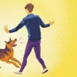 هل سبق وأن هاجمك كلب؟!