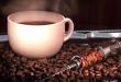 تحذير لعشاق القهوة.. 5 علامات تشير إلى إدمانك للكافيين!