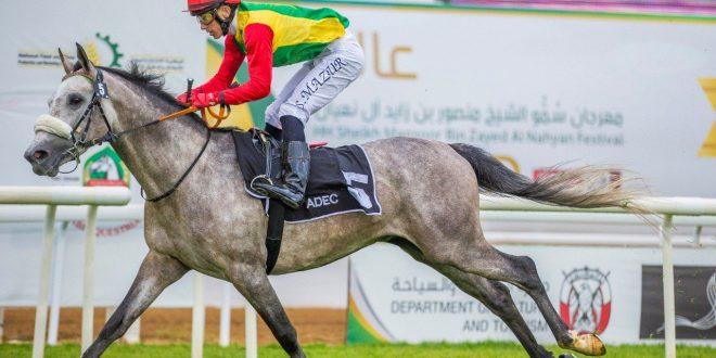 الحصان جبلاني للخيالة السلطانية يظفر بالمركز الأول بأبوظبي